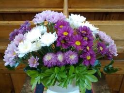 20170924-flowers